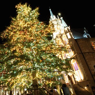 【全国参加企画】ハウステンボス光の王国で、一足早いクリスマスステイ♪